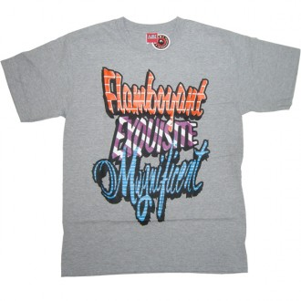 A.IN.T 'Exquisite' T Shirt  -Grey-
